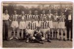 Dorost 1928