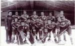 Hokej Votice